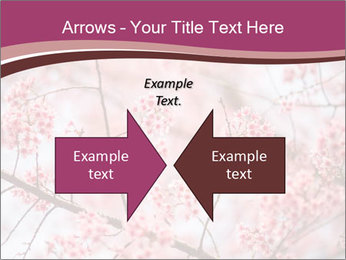 Beautiful cherry blossom PowerPoint Template - Slide 90