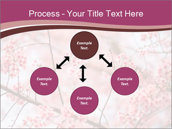Beautiful cherry blossom PowerPoint Template - Slide 91