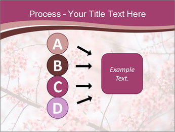 Beautiful cherry blossom PowerPoint Template - Slide 94