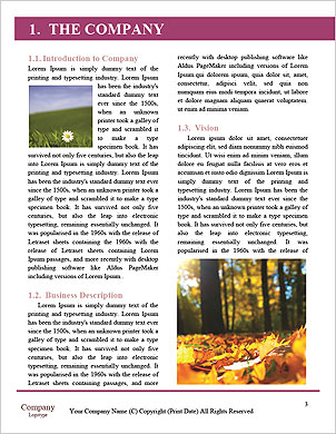 0000092828 Word Template - Page 3