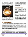 0000092831 Word Template - Page 4