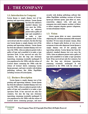 0000092834 Word Template - Page 3