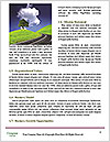 0000092834 Word Template - Page 4