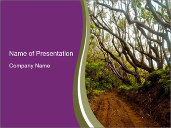Forest Preserve Fog PowerPoint Template - Slide 1