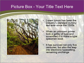 Forest Preserve Fog PowerPoint Template - Slide 13
