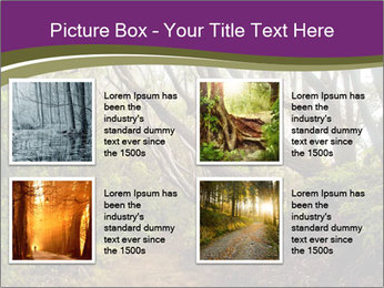 Forest Preserve Fog PowerPoint Template - Slide 14