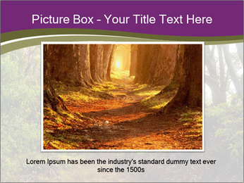 Forest Preserve Fog PowerPoint Template - Slide 15