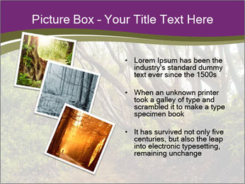 Forest Preserve Fog PowerPoint Template - Slide 17