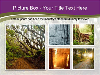 Forest Preserve Fog PowerPoint Template - Slide 19