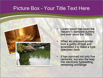 Forest Preserve Fog PowerPoint Template - Slide 20