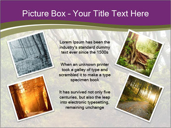 Forest Preserve Fog PowerPoint Template - Slide 24