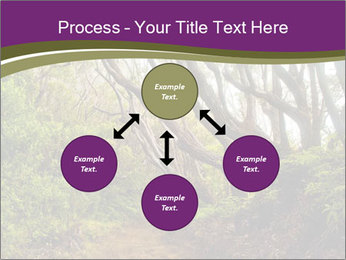 Forest Preserve Fog PowerPoint Template - Slide 91