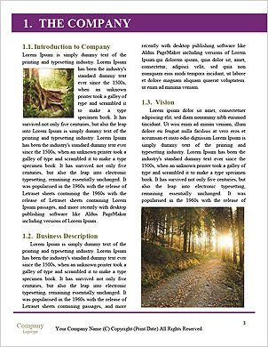0000092838 Word Template - Page 3