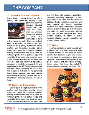 0000092841 Word Template - Page 3
