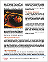 0000092841 Word Template - Page 4
