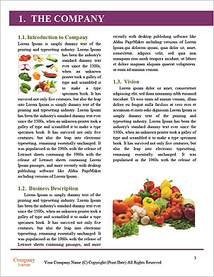 0000092843 Word Template - Page 3