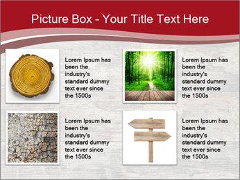 Wood PowerPoint Template - Slide 14
