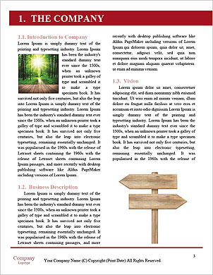 0000092847 Word Template - Page 3