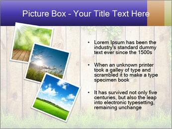 Fresh spring green grass PowerPoint Template - Slide 17