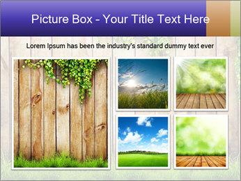Fresh spring green grass PowerPoint Template - Slide 19