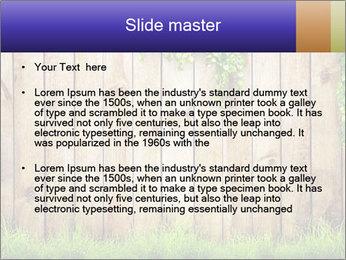 Fresh spring green grass PowerPoint Template - Slide 2