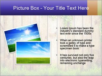 Fresh spring green grass PowerPoint Template - Slide 20