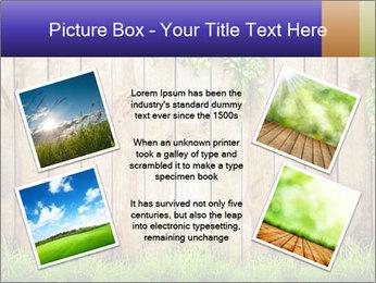 Fresh spring green grass PowerPoint Template - Slide 24