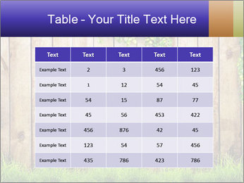 Fresh spring green grass PowerPoint Template - Slide 55