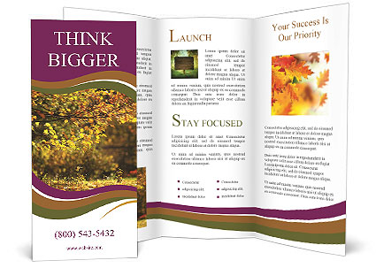 0000092851 Brochure Template