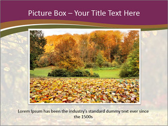 Autumn leaves PowerPoint Templates - Slide 15