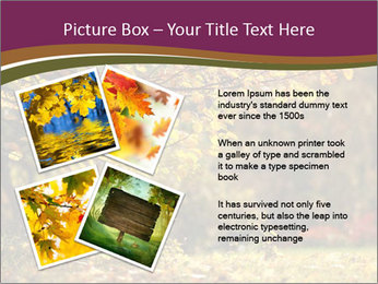 Autumn leaves PowerPoint Templates - Slide 23