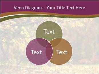 Autumn leaves PowerPoint Templates - Slide 33