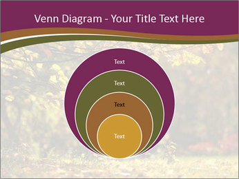 Autumn leaves PowerPoint Templates - Slide 34