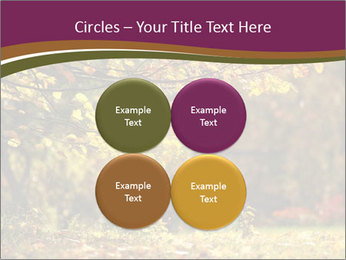 Autumn leaves PowerPoint Templates - Slide 38