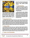 0000092851 Word Templates - Page 4