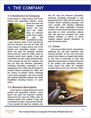 0000092863 Word Template - Page 3