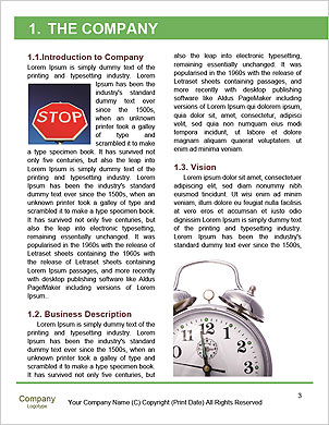 0000092875 Word Template - Page 3