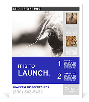 0000092880 Poster Templates