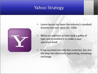 Horse'e eye PowerPoint Template - Slide 11