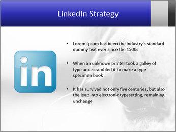 Horse'e eye PowerPoint Templates - Slide 12