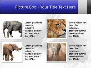 Horse'e eye PowerPoint Template - Slide 14