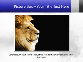 Horse'e eye PowerPoint Template - Slide 15