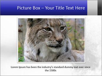 Horse'e eye PowerPoint Template - Slide 16