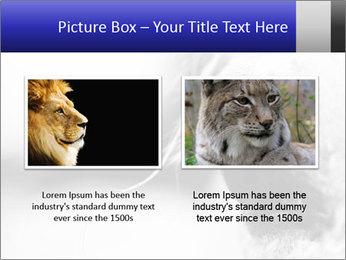Horse'e eye PowerPoint Template - Slide 18