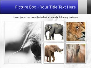 Horse'e eye PowerPoint Template - Slide 19