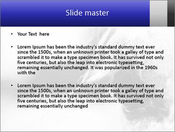 Horse'e eye PowerPoint Template - Slide 2