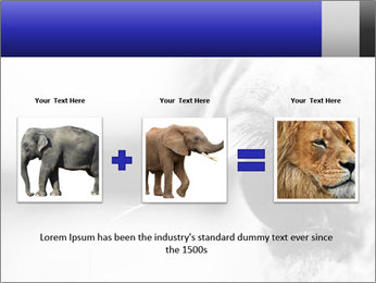 Horse'e eye PowerPoint Template - Slide 22