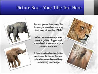 Horse'e eye PowerPoint Template - Slide 24