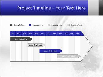 Horse'e eye PowerPoint Template - Slide 25