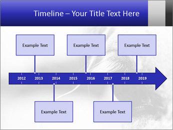 Horse'e eye PowerPoint Template - Slide 28